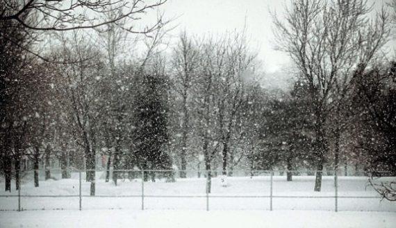 winter-harsh